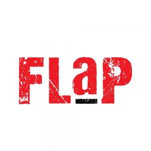 flap Pixel 4d